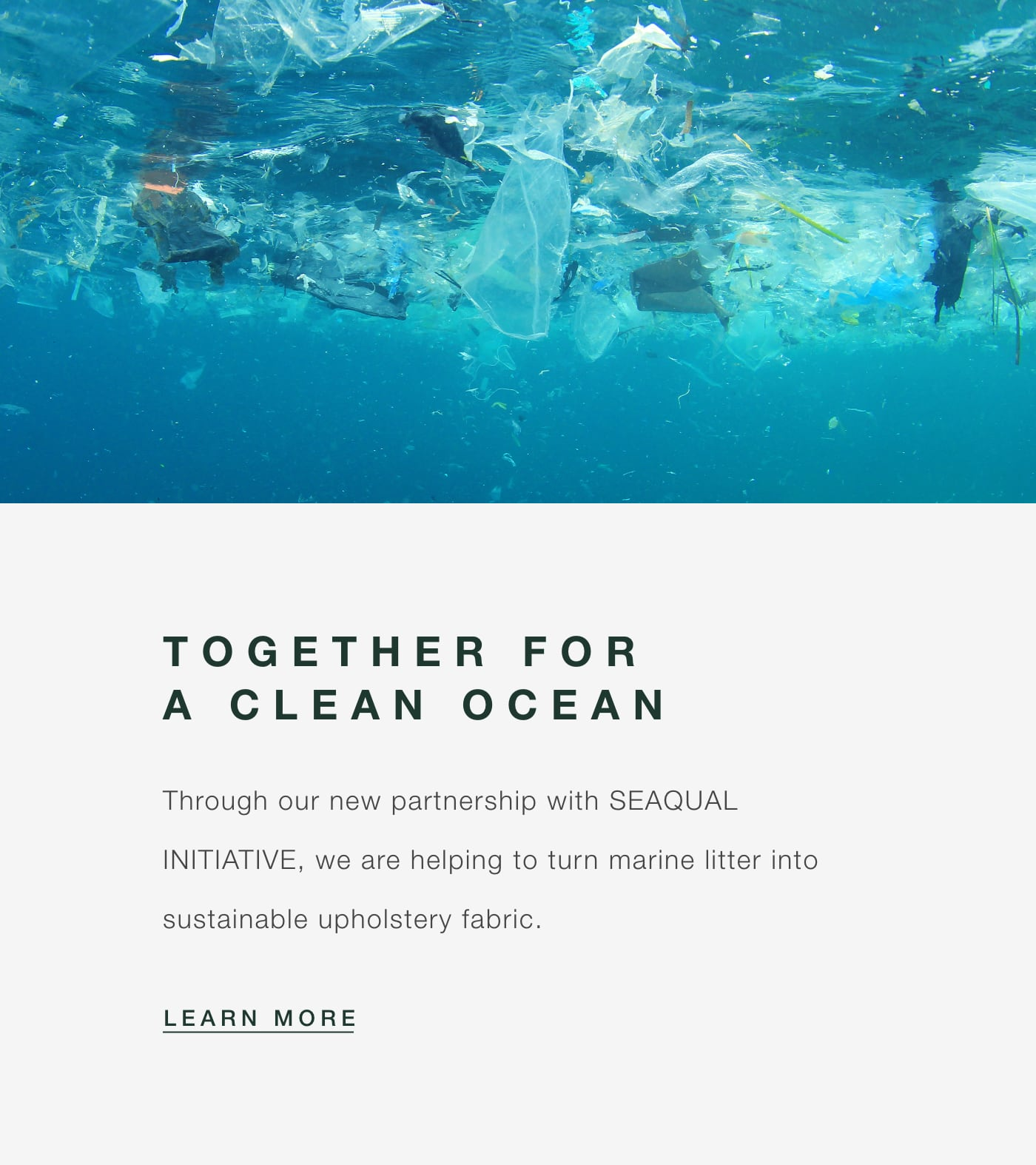 The SEAQUAL INITIATIVE for a Clean Ocean
