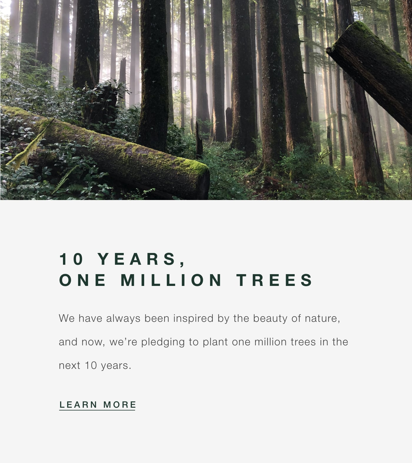American Forests - 10 Years, One Million Trees
