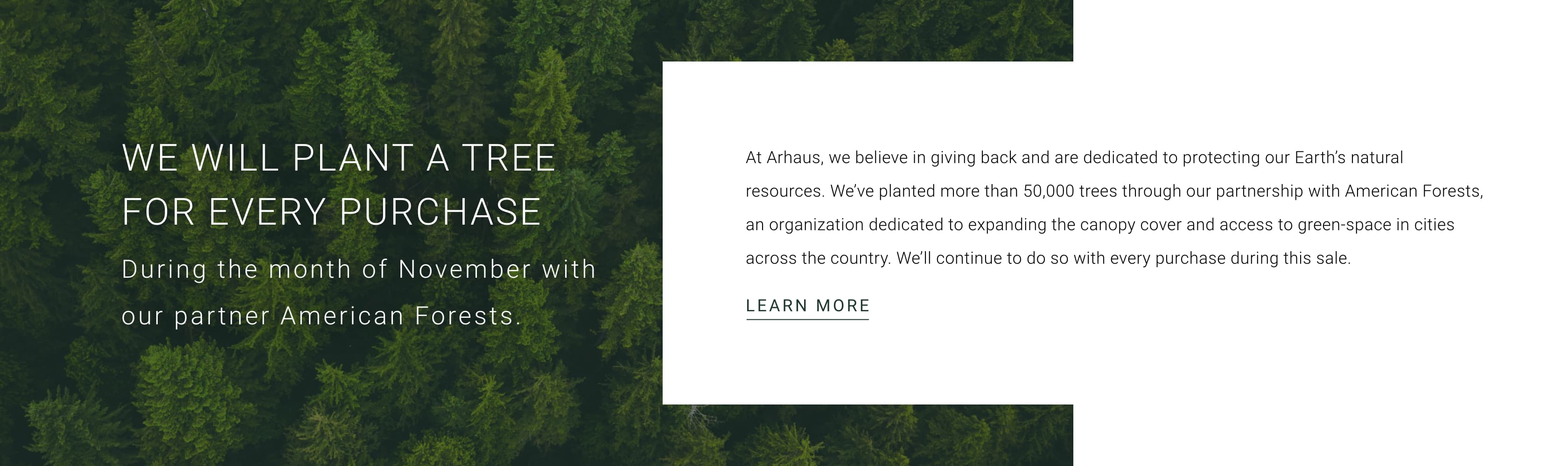 Learn More About American Forests