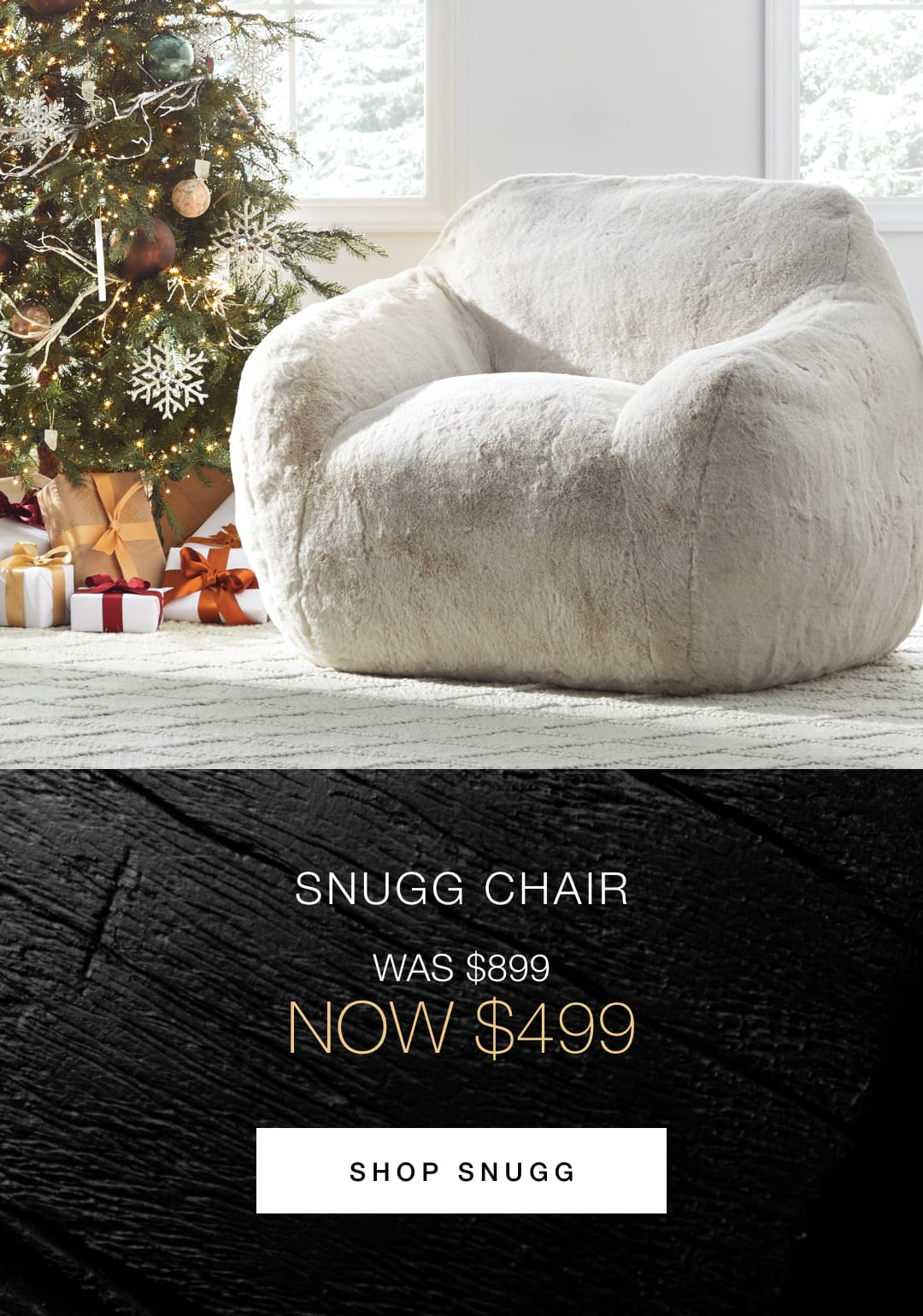 Shop the Snugg Chair