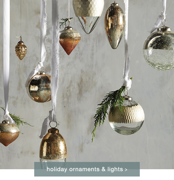 Shop Holiday Lighting and Ornaments