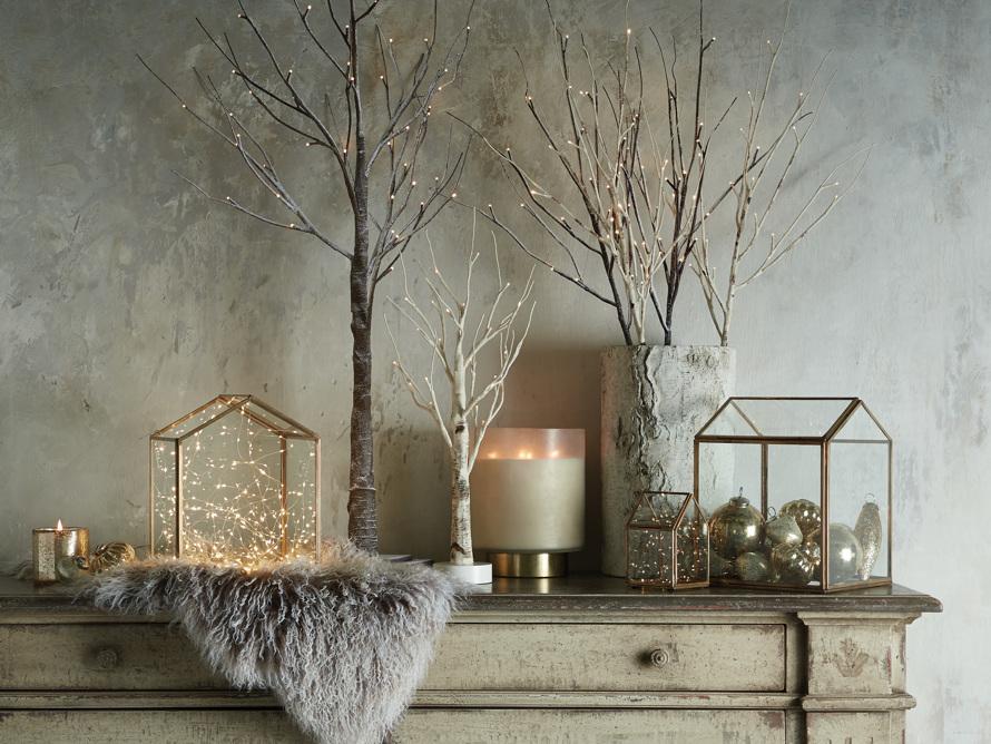 Aurora Birch Branch