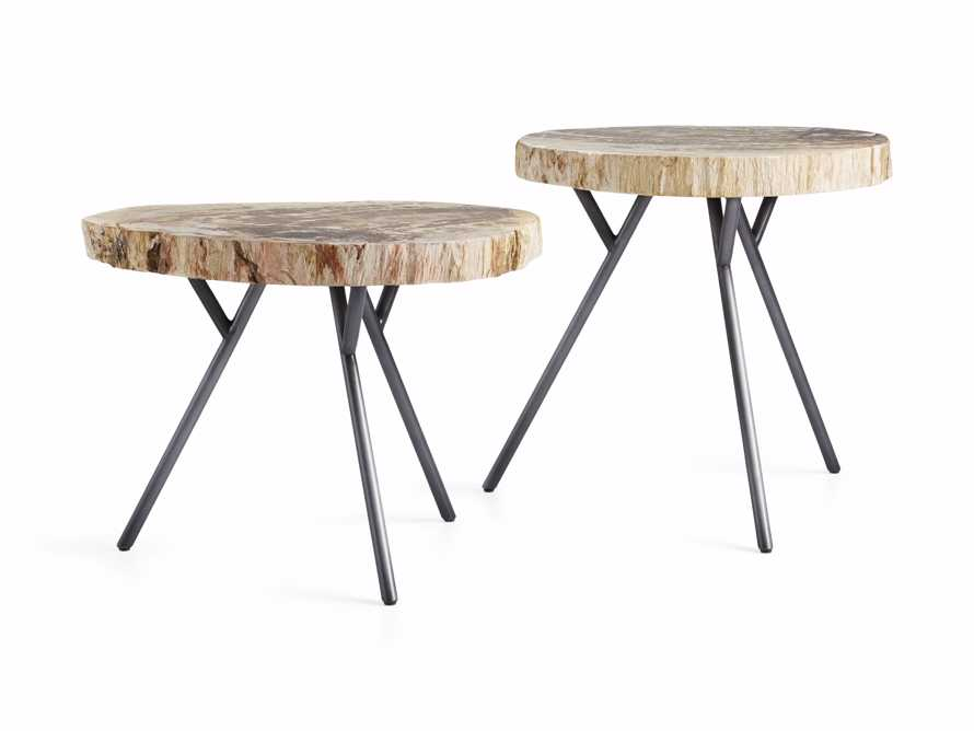 "Mangata Petrified Wood Table Duo with 16"" and 18"" Bases, slide 2 of 5"