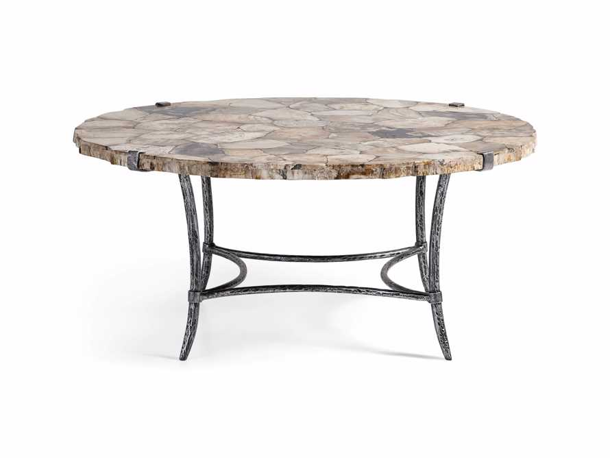 "Boracay 42"" Coffee Table in Petrified Wood, slide 3 of 6"
