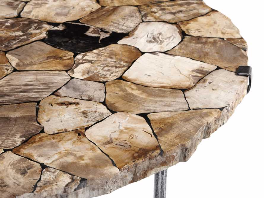 "Boracay 42"" Coffee Table in Petrified Wood, slide 5 of 6"