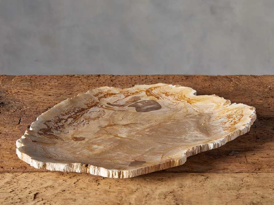 Petrified Wood Decorative Platter