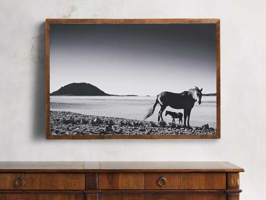 "47"" Foal Framed Print, slide 1 of 5"