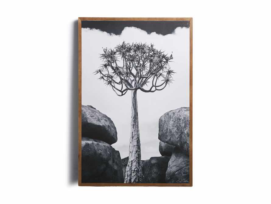 Aloidendron Framed Print, slide 4 of 6
