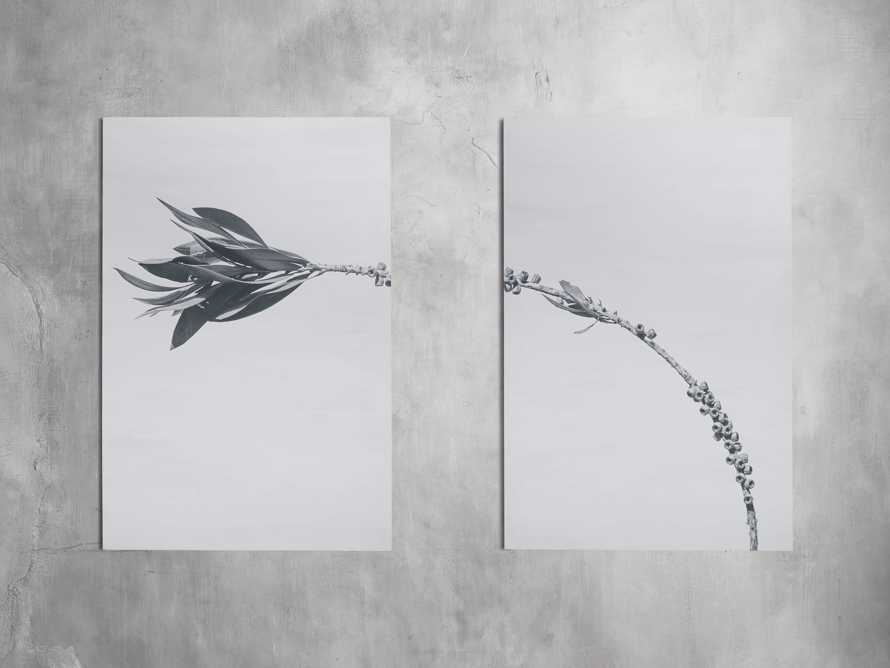Large Dried Plant Fresco Print, slide 2 of 7