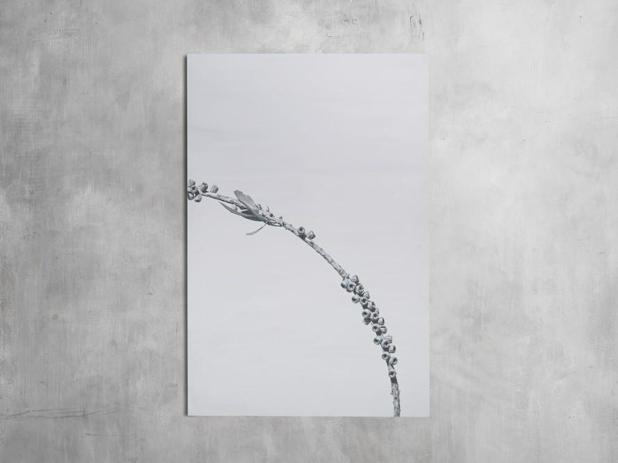 Large Dried Plant Fresco Print, slide 4 of 7