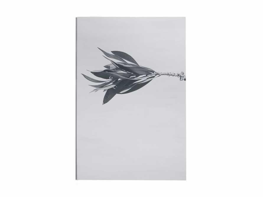 Large Dried Plant Fresco Print, slide 5 of 7