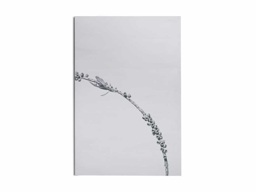 Large Dried Plant Fresco Print, slide 6 of 7