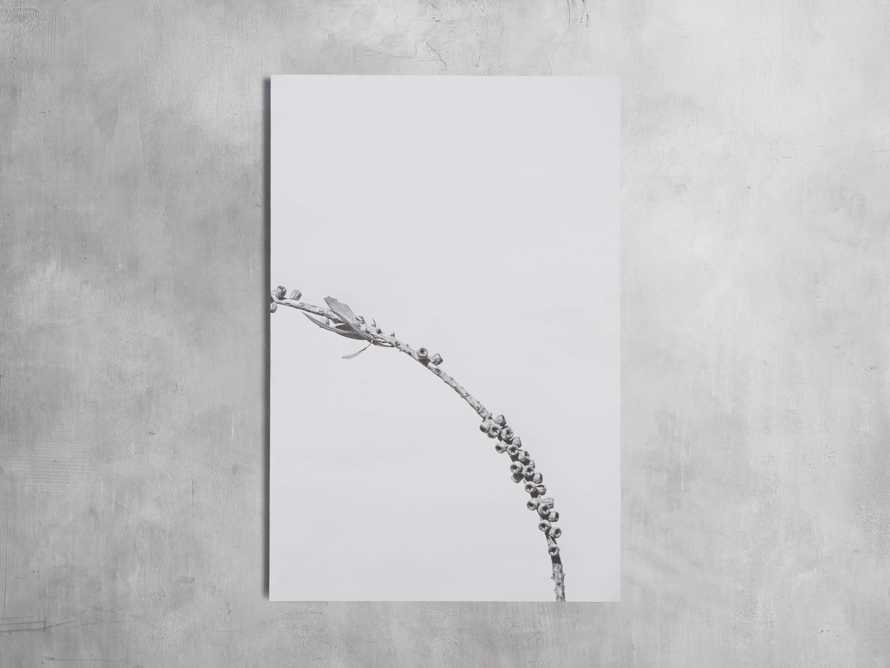 Small Dried Plant Fresco Print, slide 4 of 6