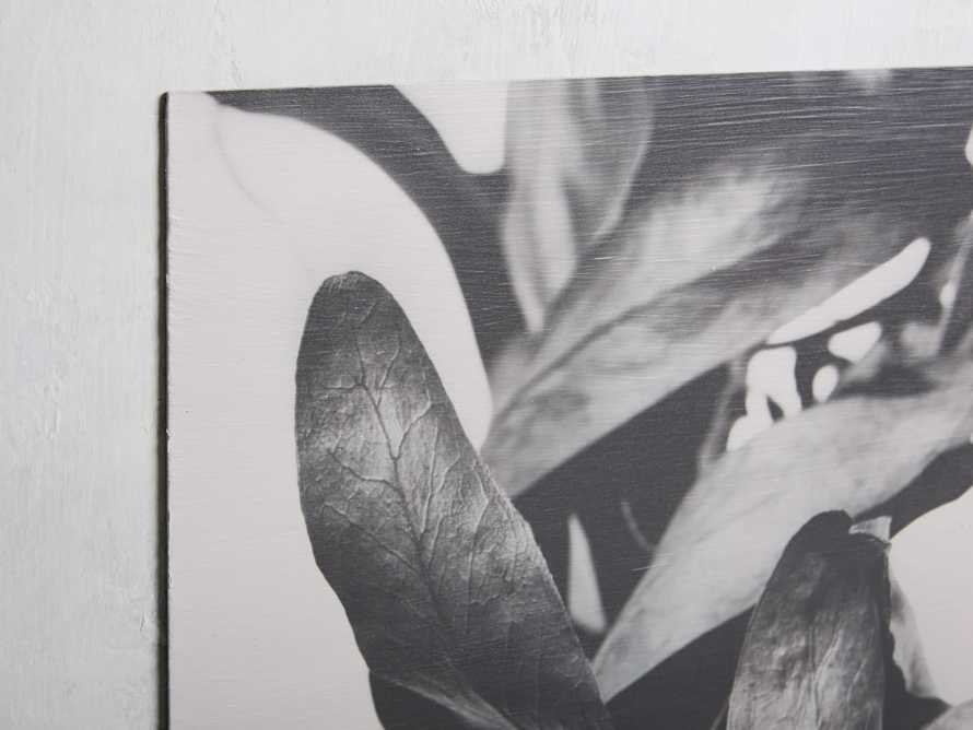 Small Protea Leaves Fresco Print