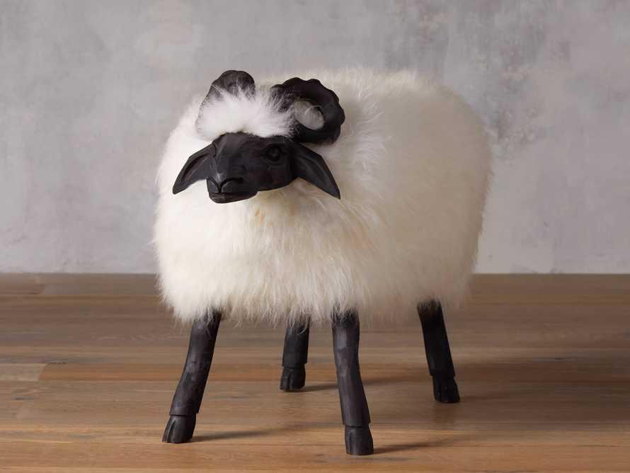Large Wooly Sheep, slide 1 of 5