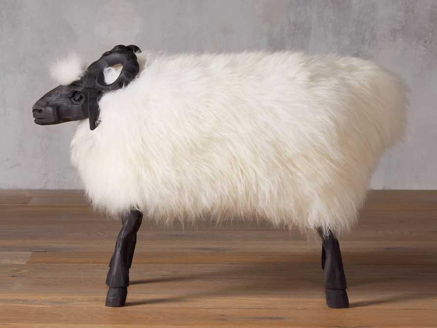 Large Wooly Sheep, slide 2 of 5
