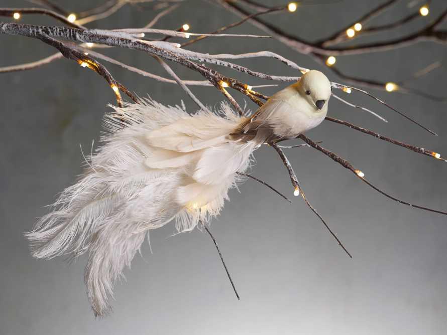 Ivory Feathered Bird (Set of 4), slide 1 of 2