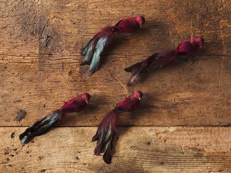 Burgundy Feathered Bird (Set of 4), slide 2 of 3