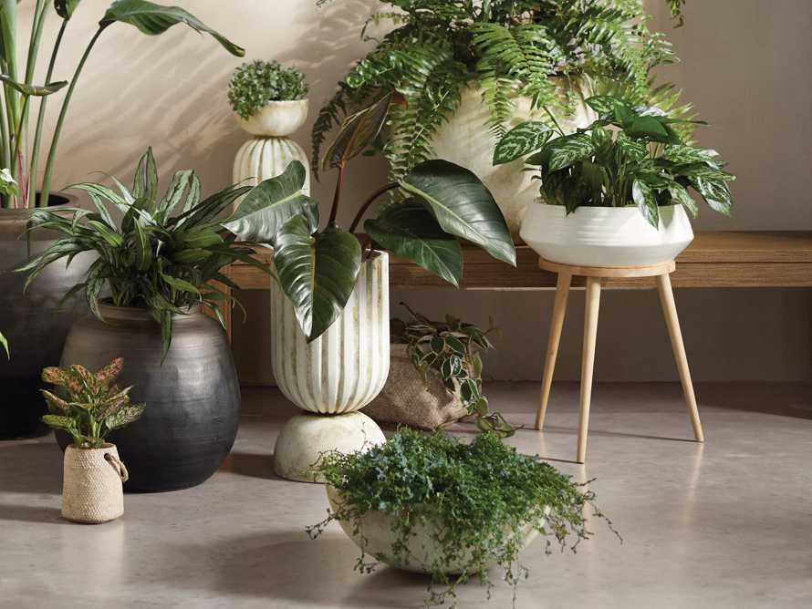 Large Miramar Reversible Planter, slide 7 of 7