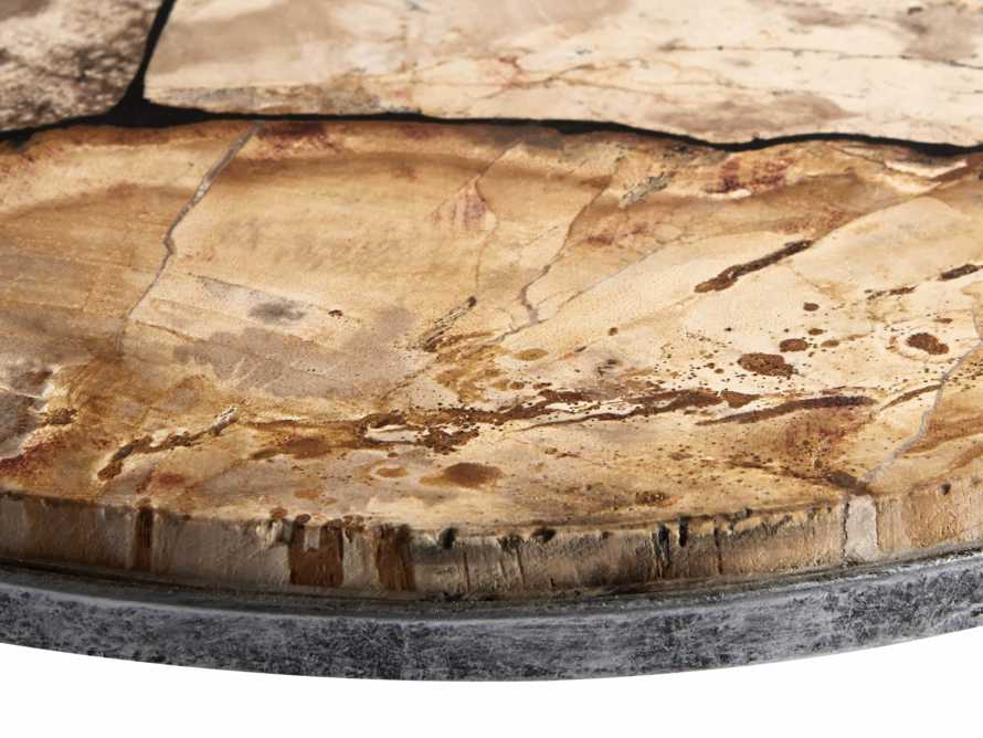Petrified Wood Petra Tray, slide 3 of 4