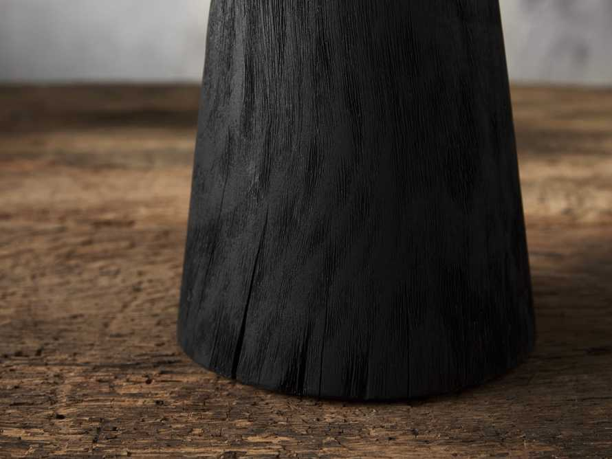 Large Carbonized Cone Tree, slide 2 of 4