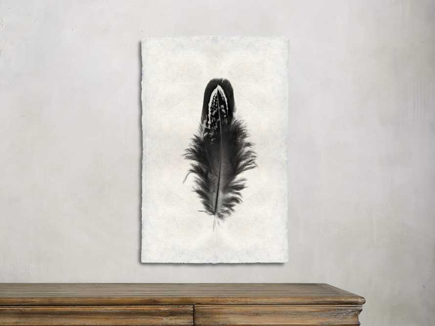 Feather Study Print III, slide 2 of 4