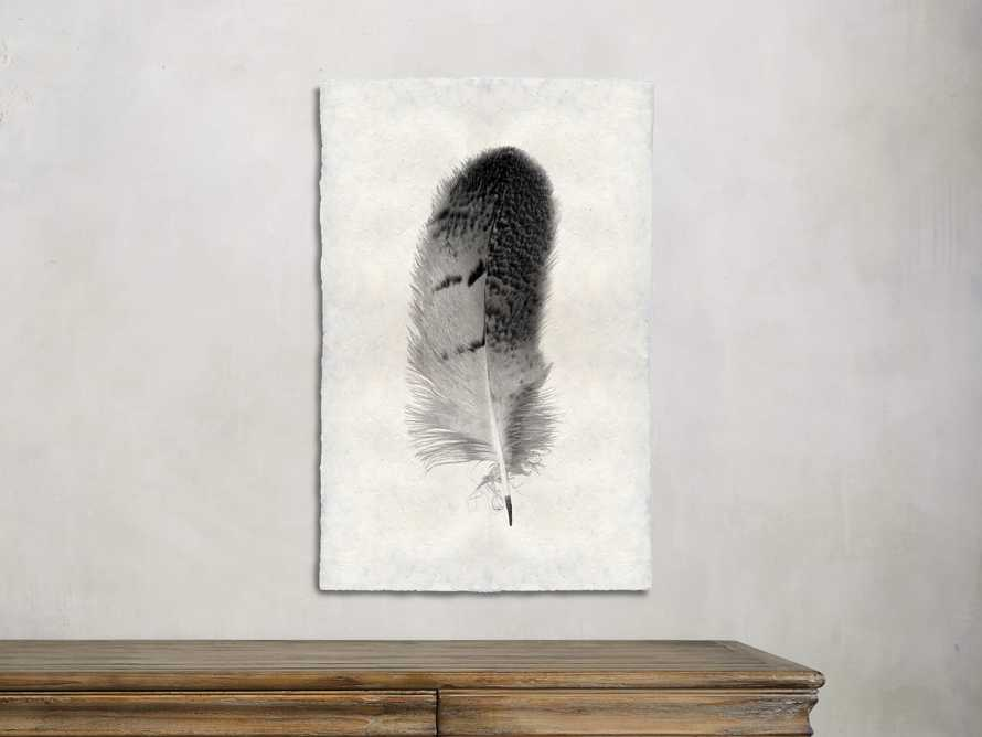 Feather Study Print 7