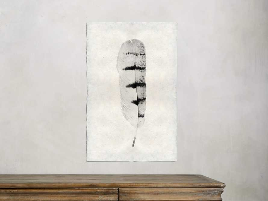 Feather Study Print VIII, slide 1 of 4