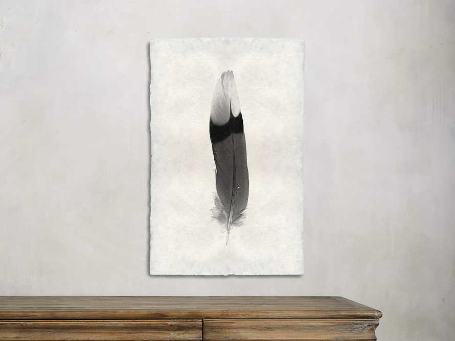 Feather Study Print 9