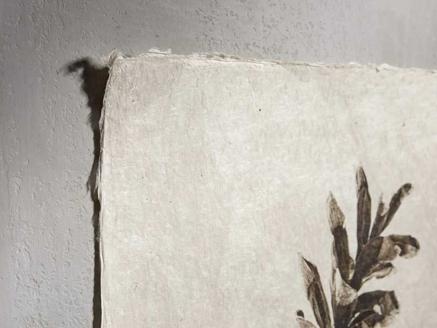 "Eastern White Pine Cone 20"" Print, slide 2 of 4"