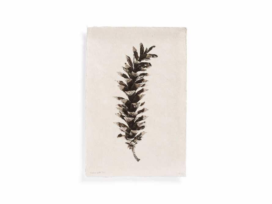 "Eastern White Pine Cone 20"" Print, slide 3 of 4"