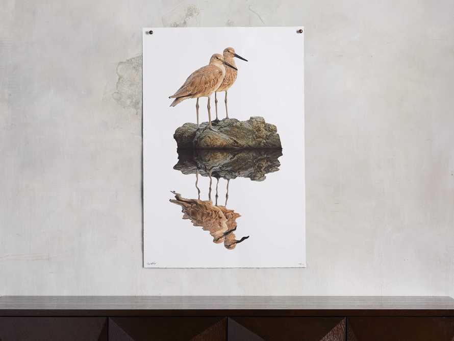 Willet Print, slide 1 of 4