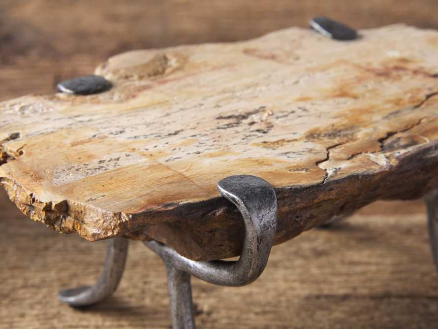 Small Petrified Wood Serving Board, slide 2 of 3