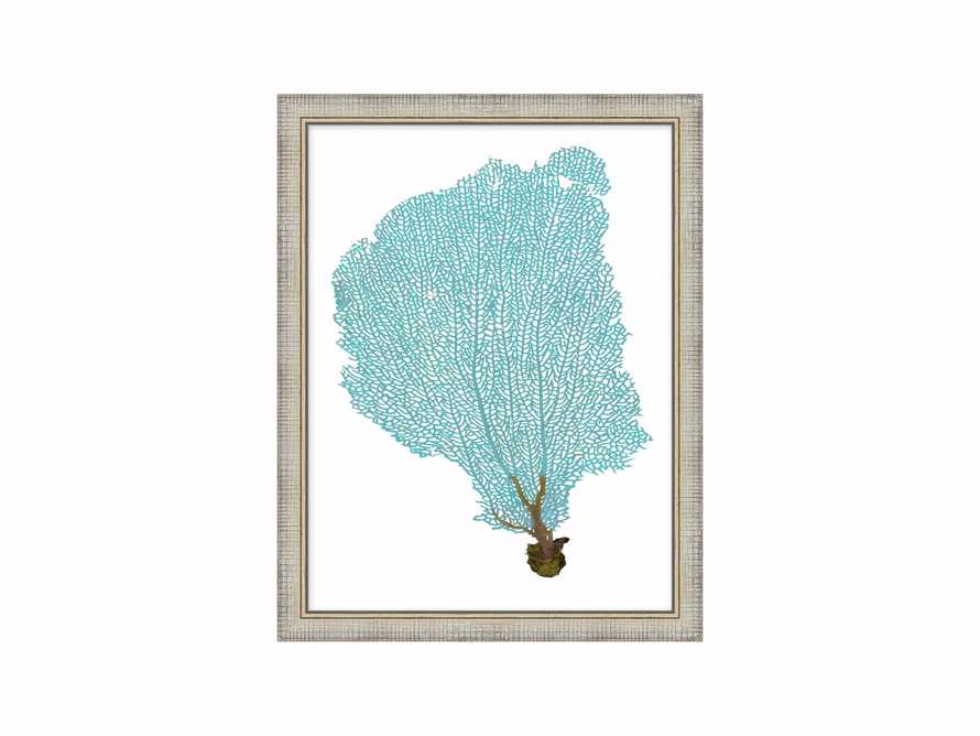 Blue Coral Framed Print #3