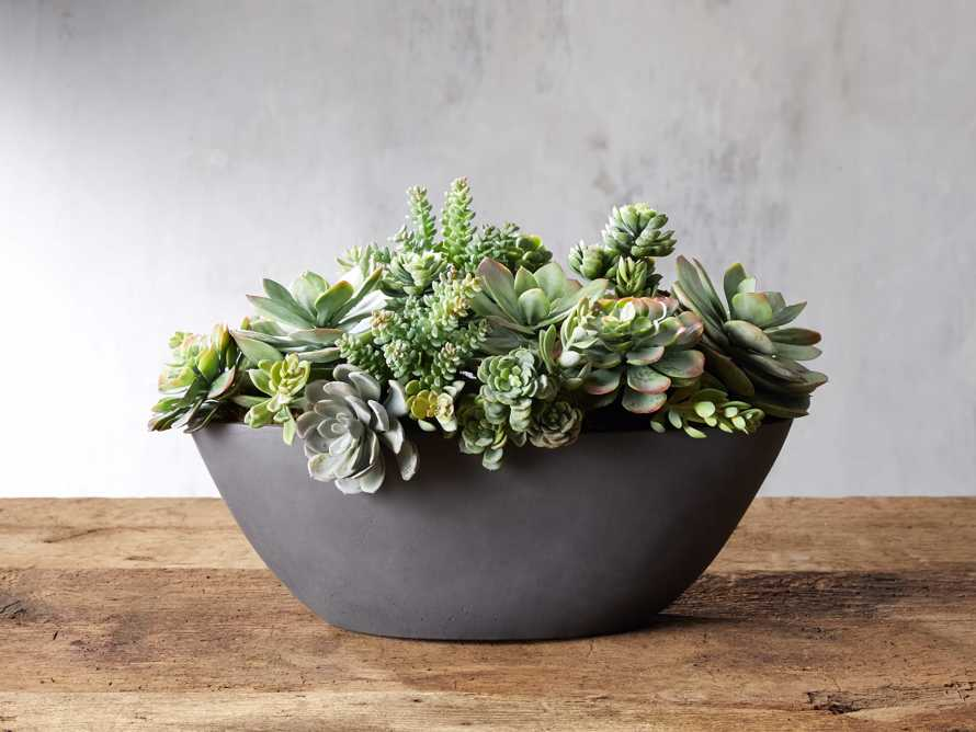 Mix Succulent Oval Planter, slide 1 of 2