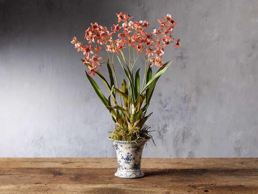 Orange Oncidium Orchid, slide 1 of 1