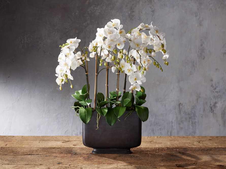 Faux Phalaenopsis Bronze Wide Vase, slide 1 of 1