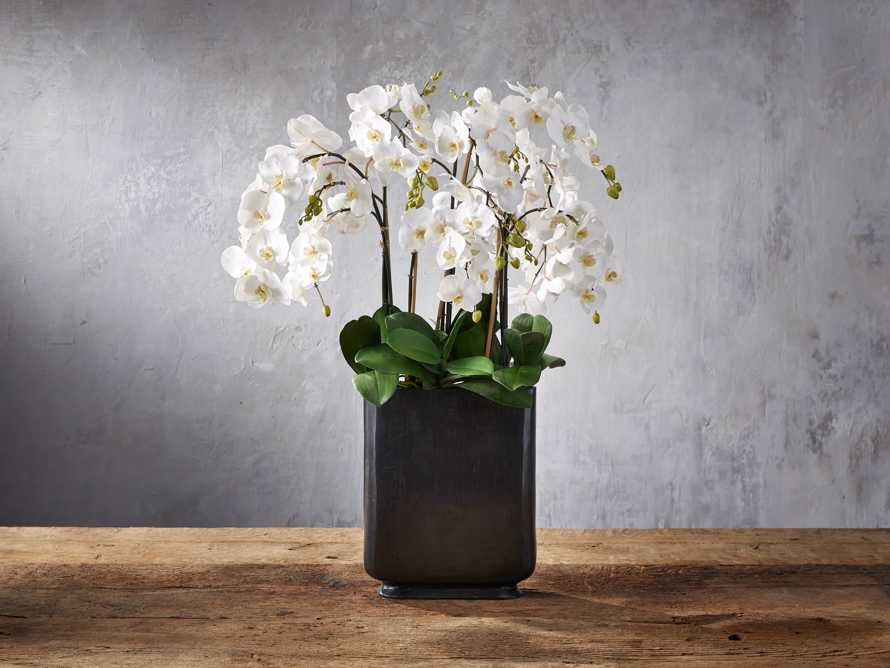 Phalaenopsis Bronze Tall Vase, slide 1 of 2