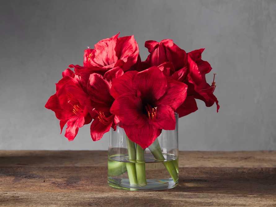 "Faux Garden Amaryllis Vase 14"", slide 1 of 3"
