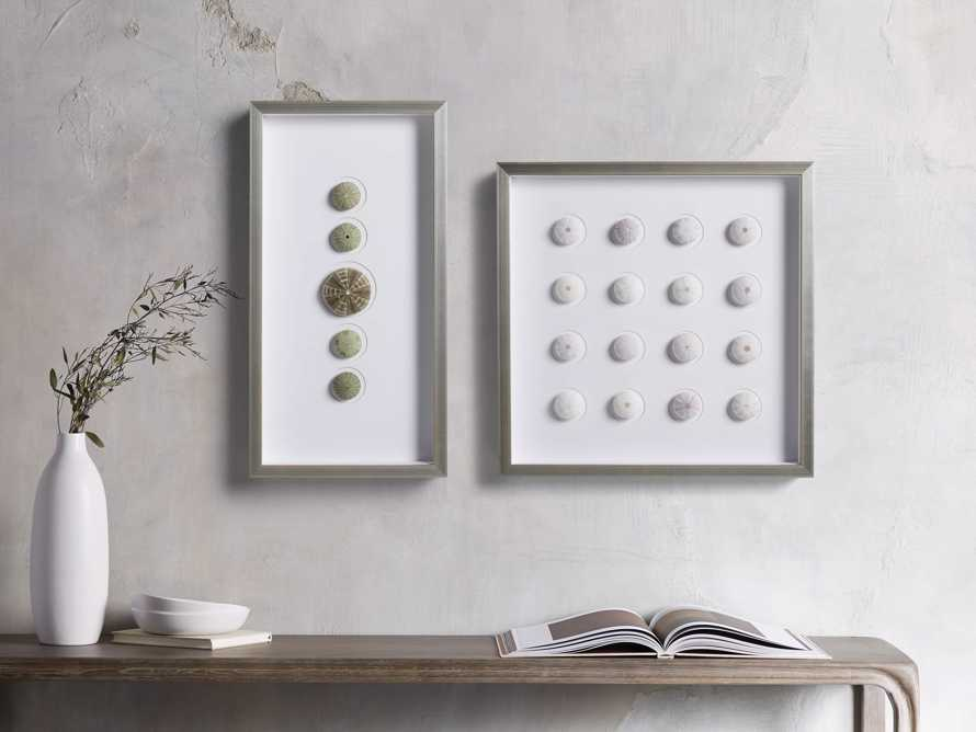 Urchins I Framed Print, slide 3 of 5