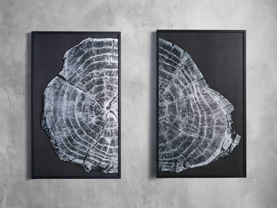 "37"" Tree Ring Framed Diptych 2"