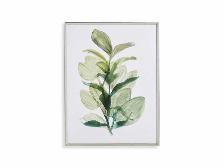 Translucent Leaves Framed Print I, slide 7 of 7