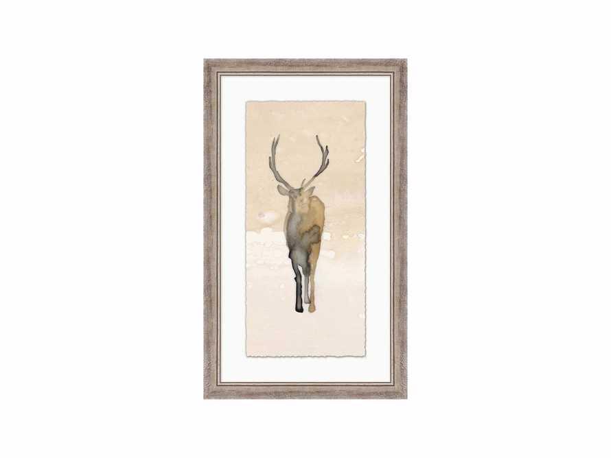 """Deer Shadow 24"""" X 40"""" Print 1"""