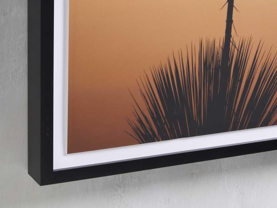 Yucca Framed Print, slide 2 of 5