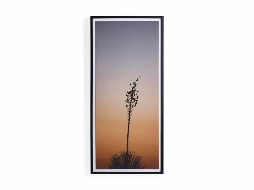 Yucca Framed Print, slide 5 of 5