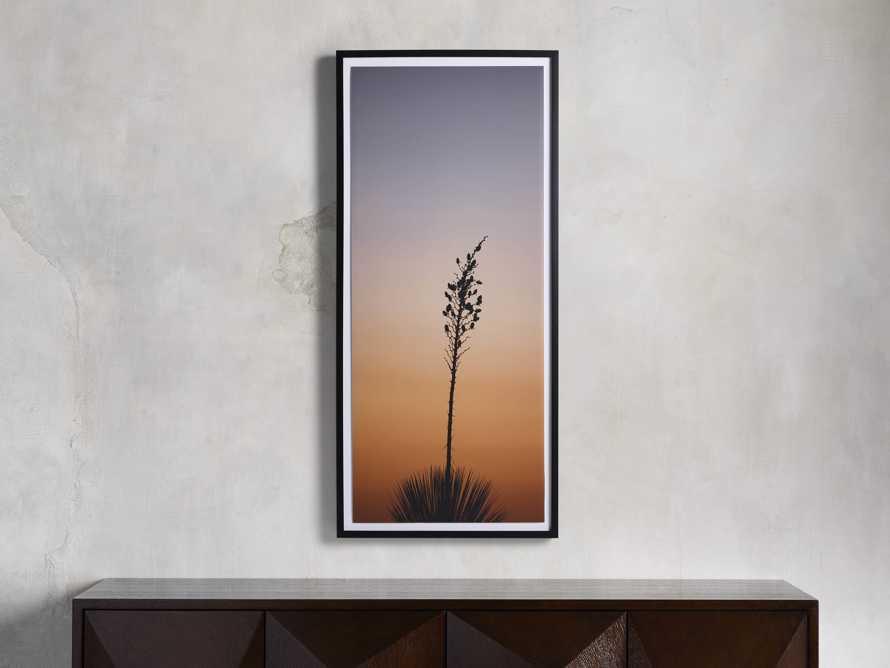 Yucca Framed Print, slide 1 of 4