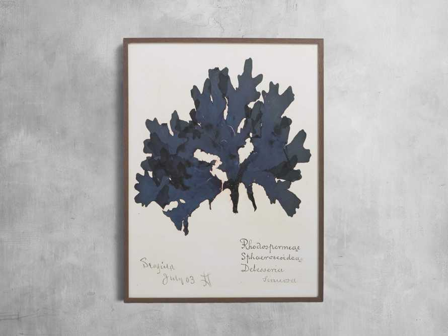 "32"" Blue Seaweed Framed Print I, slide 1 of 5"