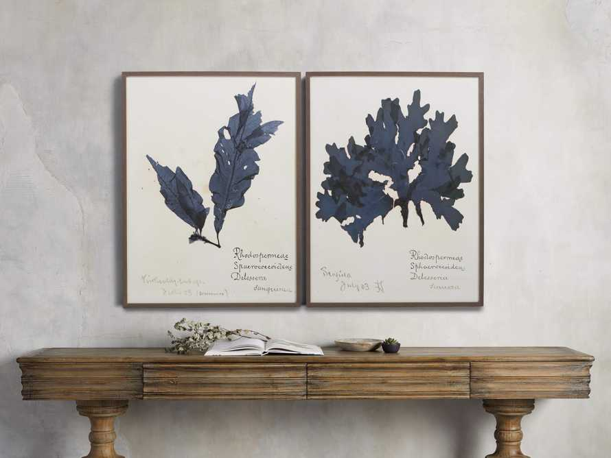 "32"" Blue Seaweed Framed Print I, slide 3 of 5"
