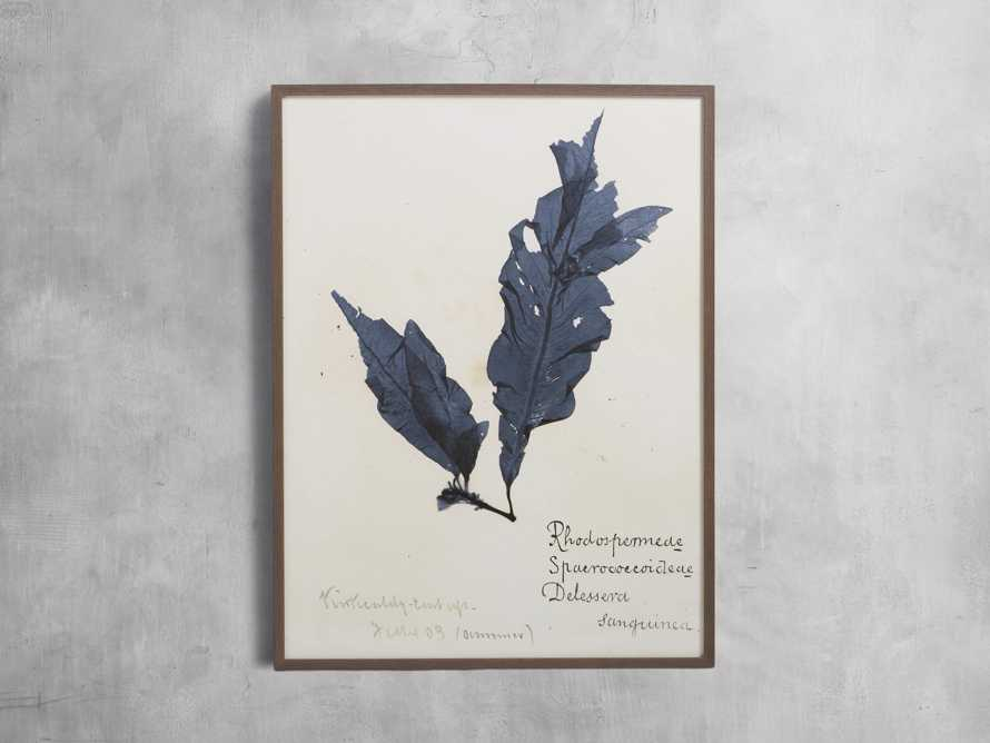 "32"" Blue Seaweed Framed Print II, slide 1 of 5"