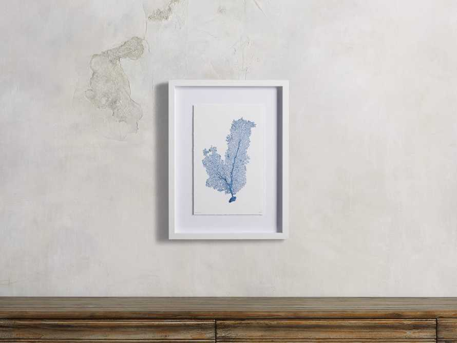 Blue Sea Fan III Print, slide 1 of 4